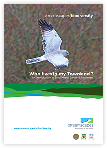 Who_Lives_In_My_Townland