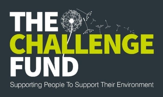 the-challenge-fund-logo